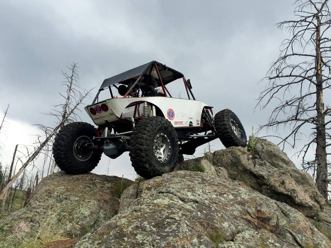 custom buggy fort collins